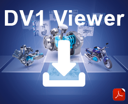 DV 1 Viewer